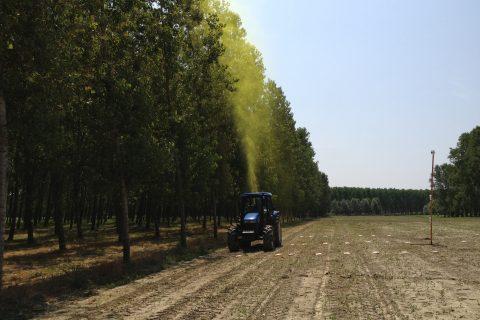 Drift test in poplar crops